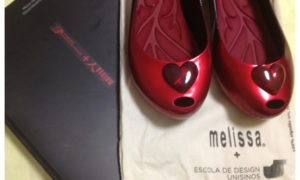 Melissa Ultragirl Academy + Unisinos